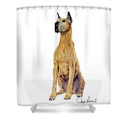 Brave Shower Curtain by Phyllis Howard
