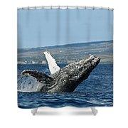 Breach Near Maui I Shower Curtain