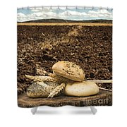 Bread And Wheat Ears. Plowed Land Shower Curtain by Deyan Georgiev