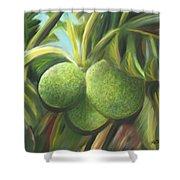 Breadfruits St Kitts Shower Curtain