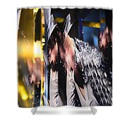 Break On Through To The Other Side Shower Curtain