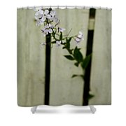 Break-out Shower Curtain