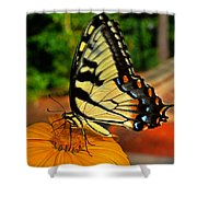 Breakfast At The Gardens - Swallowtail Butterfly 005 Shower Curtain