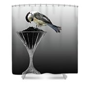 Breakfast At The Waterford Shower Curtain