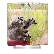 Breakfast Guests Shower Curtain