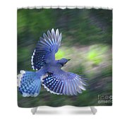 Breaking Jay Shower Curtain