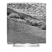 Breaking Wave In Black And White Shower Curtain