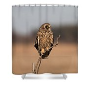 Breaktime Shower Curtain