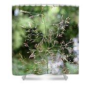 Breezy Summer Shower Curtain