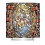 Brezice Castle Museum Shower Curtain