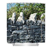 Briars And Stones New Quay Ireland County Clare Shower Curtain