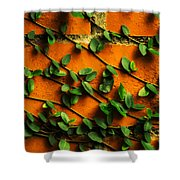 Brick And Leafs Shower Curtain