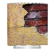 Brick Exposed Shower Curtain