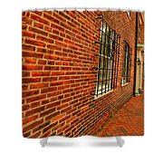 Brick Houses Shower Curtain