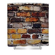 Brick Wall Shower Curtain by Tim Good