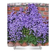 Brick Wall With Blue Flowers Shower Curtain