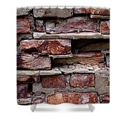 Brickbats Shower Curtain by Tim Good