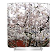 Bricks And Blossoms Shower Curtain
