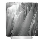 Bridal Gowns Shower Curtain by Wayne King