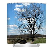 Bridge And A Tree Shower Curtain