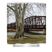 Bridge By The Tree Shower Curtain