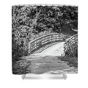 Bridge In The Path I Shower Curtain