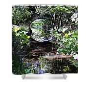 Bridge Reflection At Blarney Caste Ireland Shower Curtain