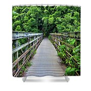 Bridge To Bamboo Forest Shower Curtain