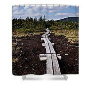 Bridge To Mizpah Shower Curtain