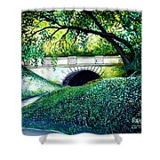 Bridge To New York Shower Curtain