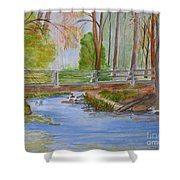 Bridge To Serenity   Smithgall Woods State Park Shower Curtain