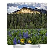 Bridger Teton National Forest Shower Curtain