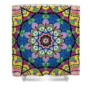 Brigadoon No. 1 Kaleidoscope Shower Curtain