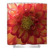 Red And Yellow Flower Bloom Shower Curtain