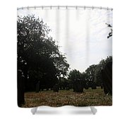 Bright And Sunny Day In The Cemetery Shower Curtain