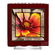 Bright Blanket Flower With Design Shower Curtain