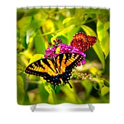 Bright Butterflies Shower Curtain