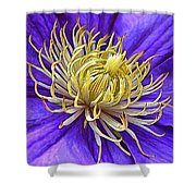Bright Clematis Center Shower Curtain