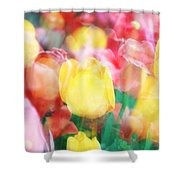 Bright Dreams In The Tulips Shower Curtain