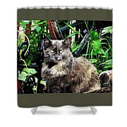 Bright Eyes Shower Curtain