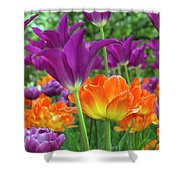 Bright Floral Shower Curtain