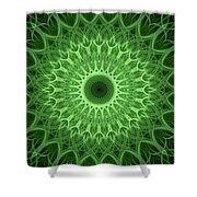 Bright Green Mandala Shower Curtain