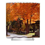Bright Maple Morning Shower Curtain
