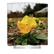 Bright Shower Curtain