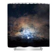 Bright Night Skies Shower Curtain