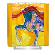 Bright Passage Shower Curtain