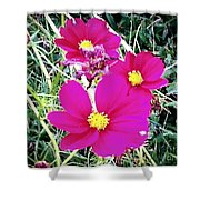 Bright Pink Flowers Shower Curtain