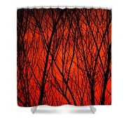 Bright Red Sunset Shower Curtain