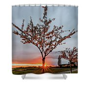 Bright Sun With Long Red Rays Shines Near The Trunk Shower Curtain