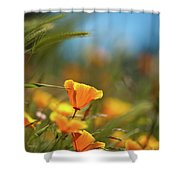 Bright Sunny Day Shower Curtain
